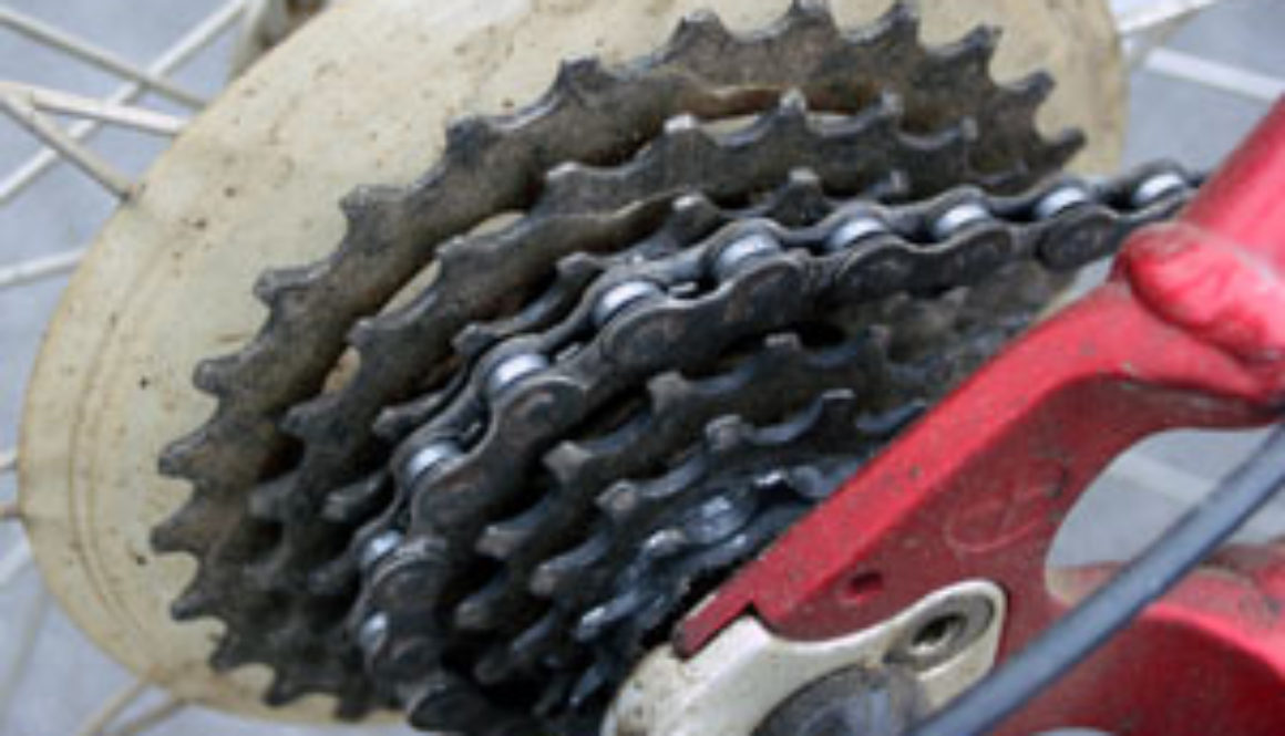 The rear cog of a bicycle drivetrain. Photo Courtesy of CoachLevi.com.