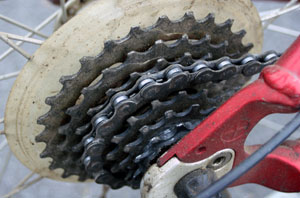 Bicycle Gears: You Can't Ride Without Them